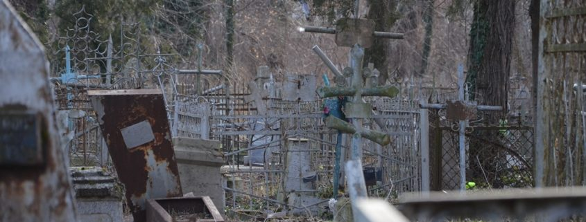 Осмотр памятников на Всесвятском кладбище г. Краснодара